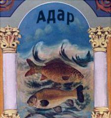 Адар рыба