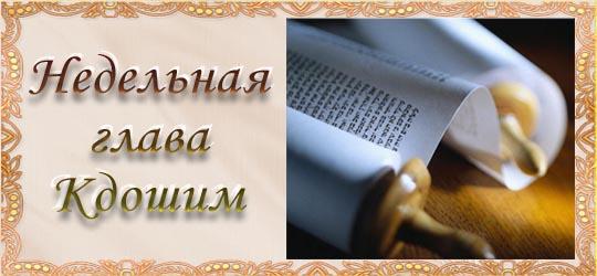 Недельная глава «Кдошим»