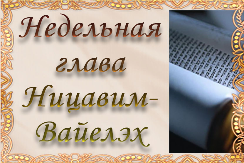 Недельная глава «Ницавим-Вайэлех»