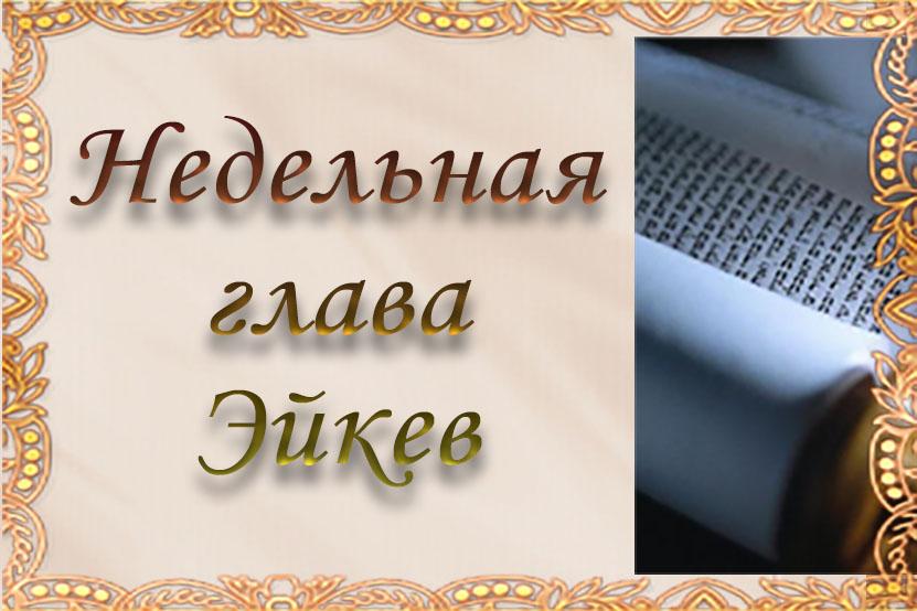 Недельная глава «Эйкев»